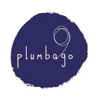 logo plumbago